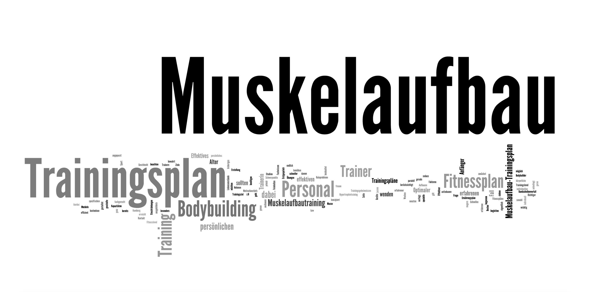 Personal Trainer Hamburg Muskelaufbau Trainingsplan
